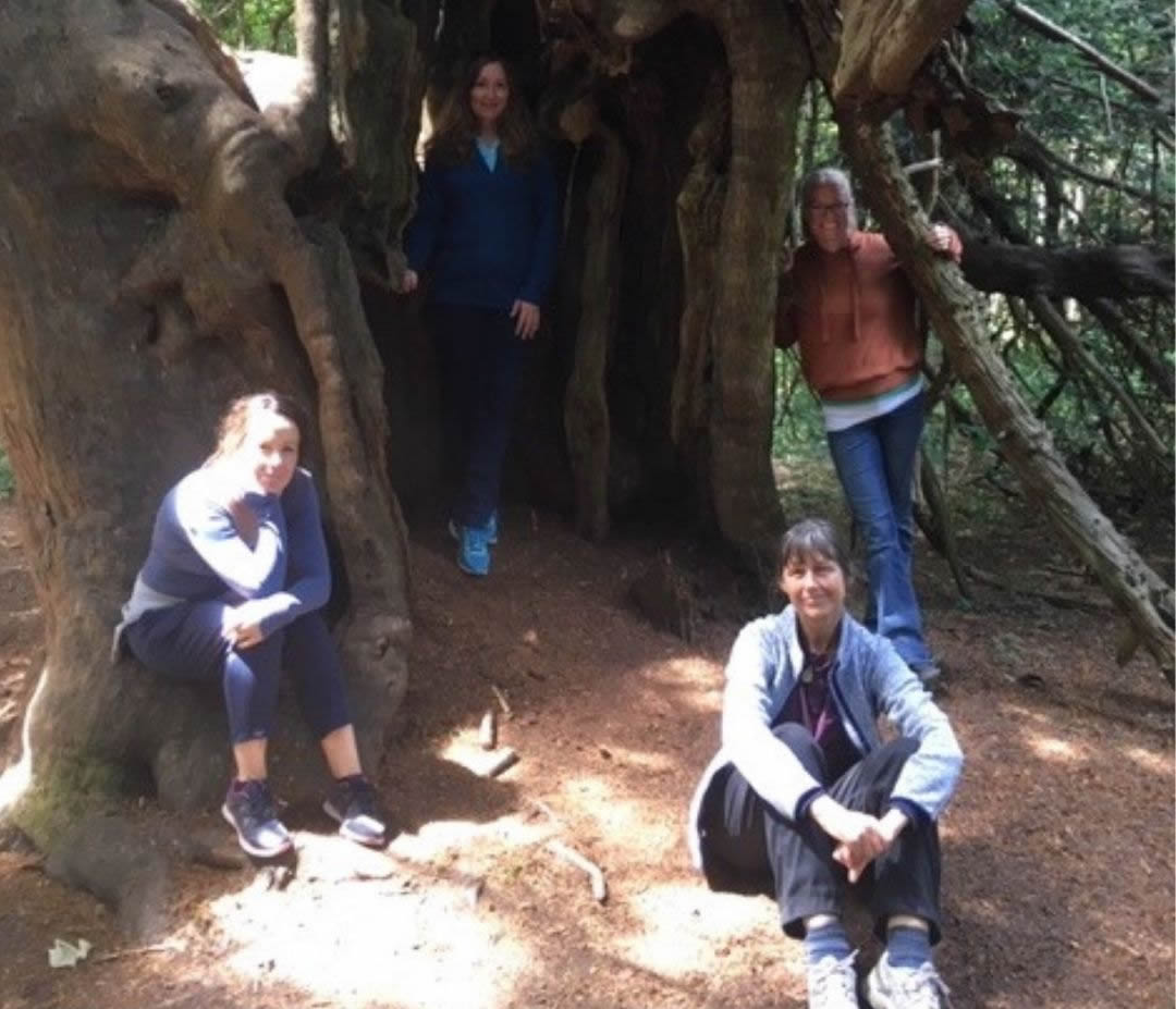 Participants by an ancient Yew Tree at Newlands Corner Agata