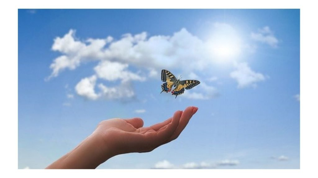 Karyn Heartsmith Henfrey  Wonderful world of wellbeing